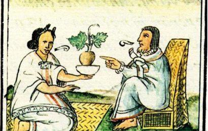 AZTEC MEDICINE