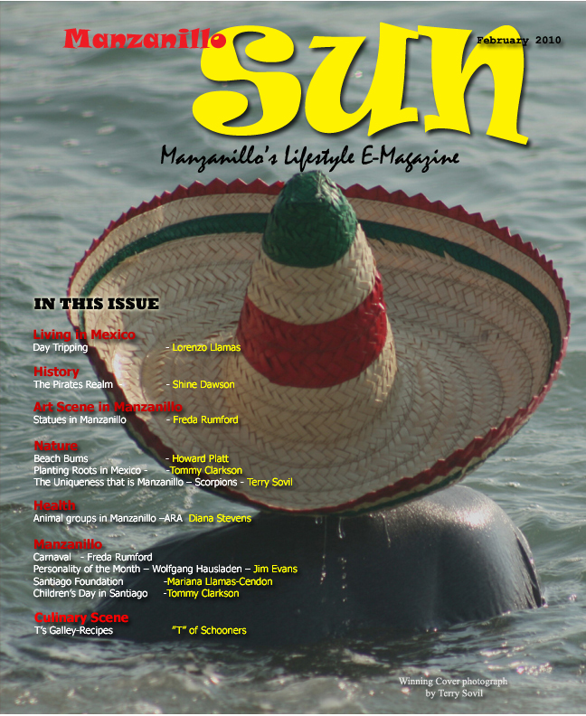 Manzanillo Sun February 2010 cover