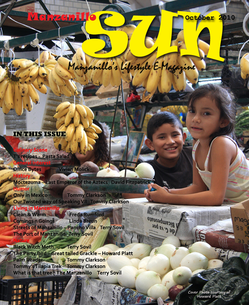 Manzanillo Sun October 2010 cover