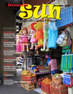 Manzanillo Sun November 2010 cover