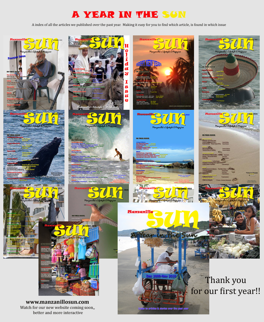 Manzanillo Sun 2010 year in review cover
