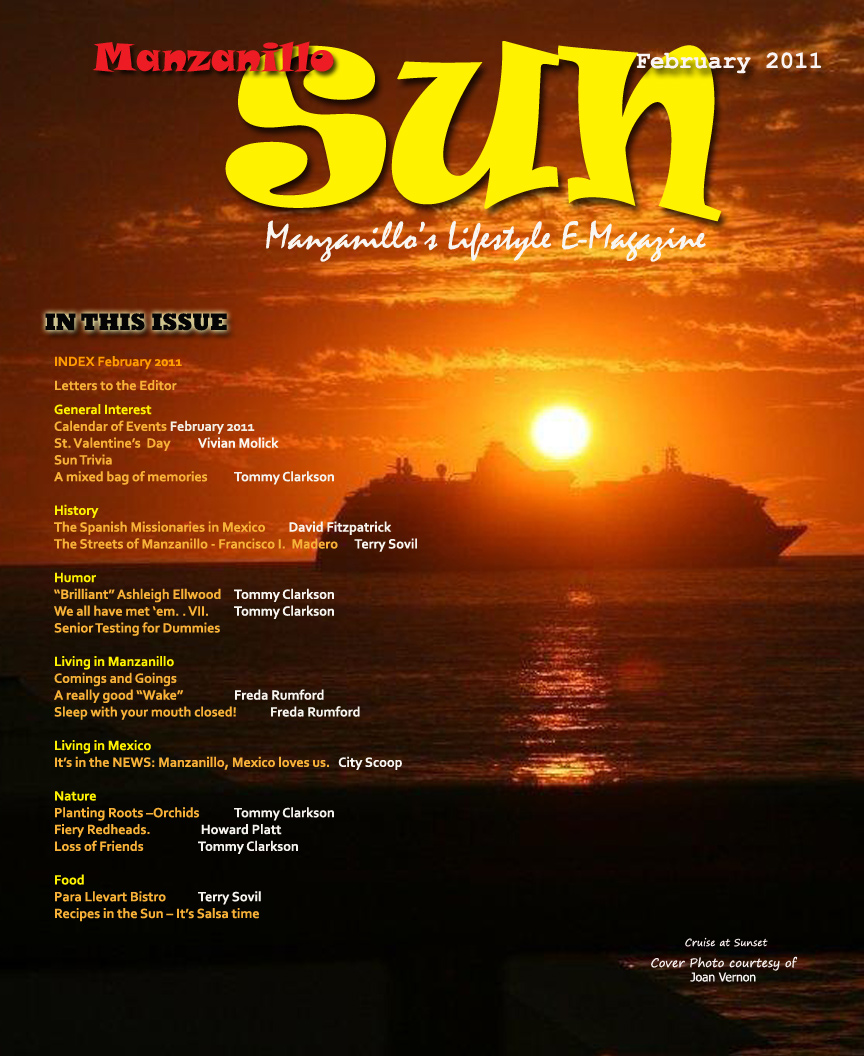 Manzanillo Sun February 2011 cover