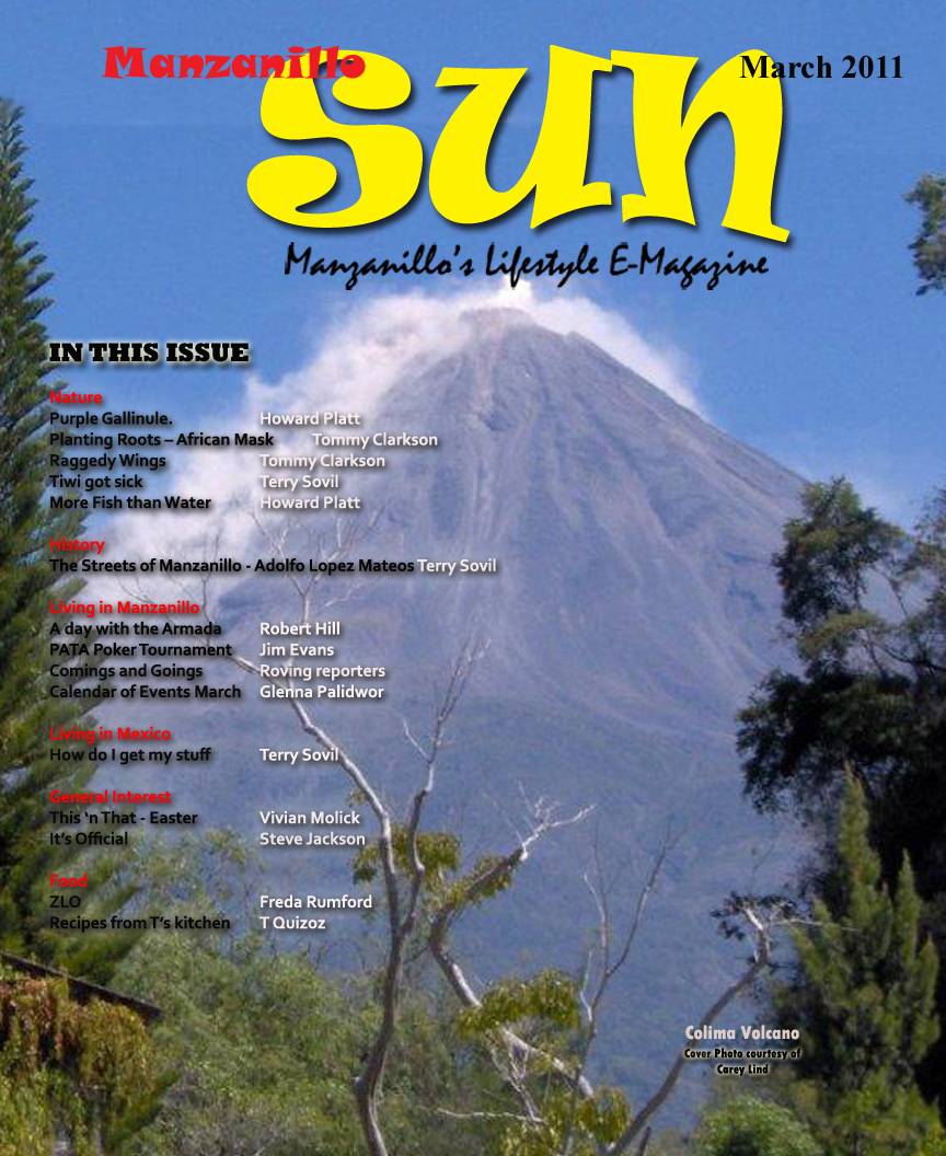 Manzanillo Sun March 2011 cover