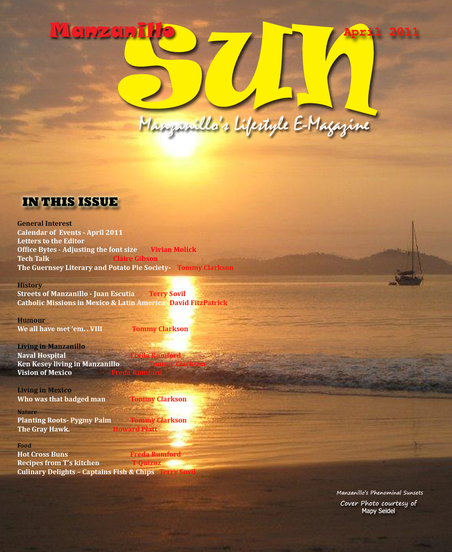 Manzanillo Sun April 2011 cover