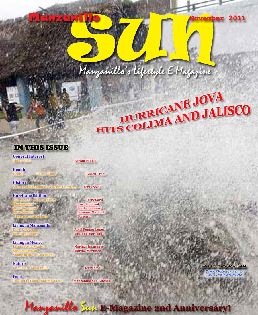 Manzanillo Sun November 2011 cover