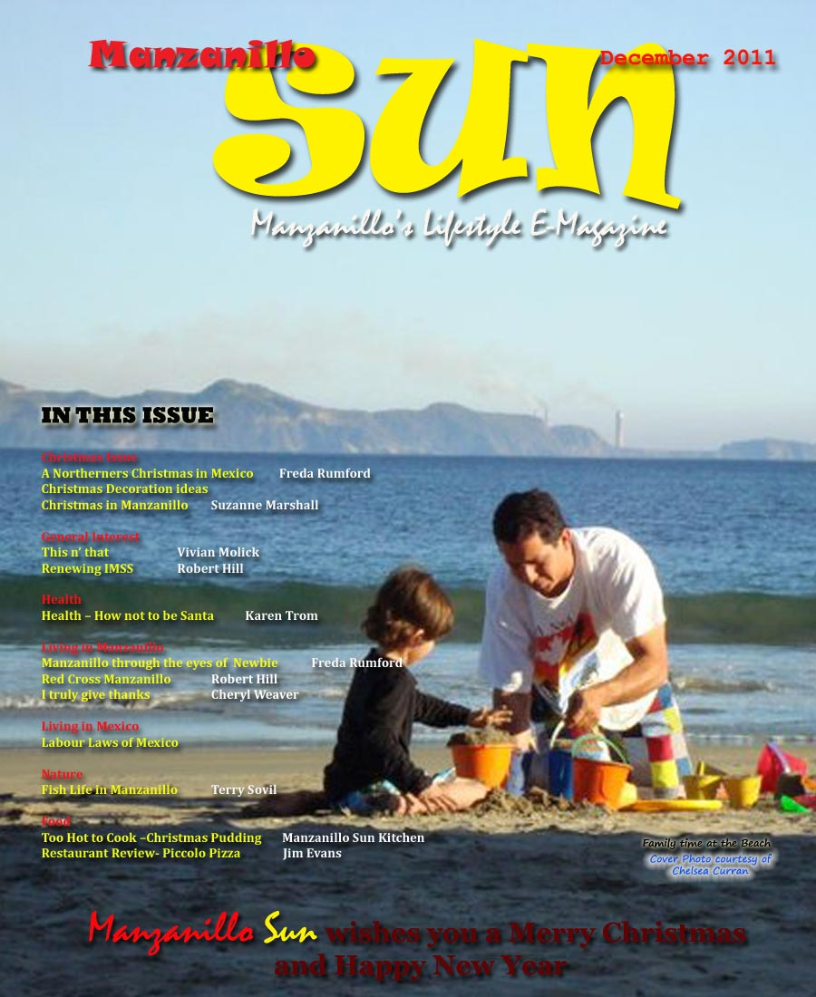 Manzanillo Sun December 2011 cover