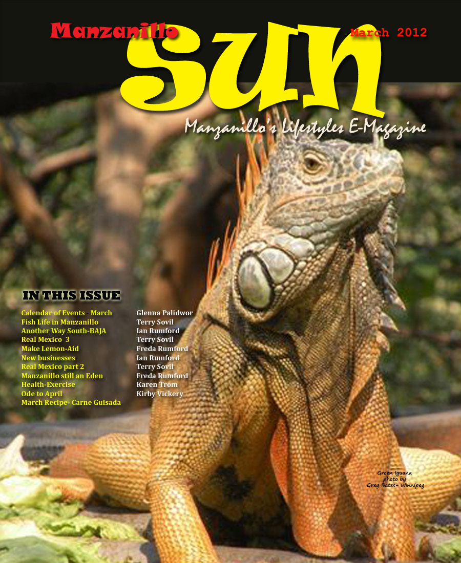Manzanillo Sun March 2012 cover