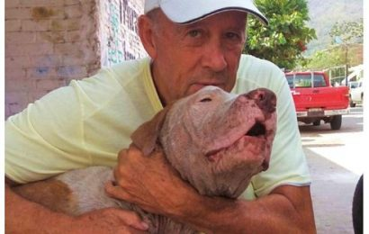 Making Life in Manzanillo Better for  Thousands of Animals and the Community