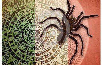 The Aztec Owl